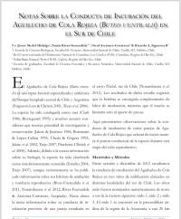 Notas sobre la conducta de incubación del Aguilucho de cola rojiza (buteo ventralis) en el sur de Chile